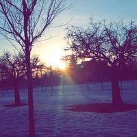 Photo taken at Parc De Louisborg by caio r. on 4/1/2015