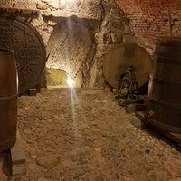 Photo taken at Pilsen historical underground by Daniel C. on 3/28/2018