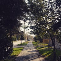 12/21/2014 tarihinde Begüm K.ziyaretçi tarafından Kırkpınar Yürüyüş Yolu'de çekilen fotoğraf