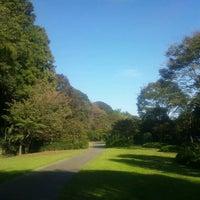 Photo taken at もみじ谷 by Toshitaka M. on 11/4/2012