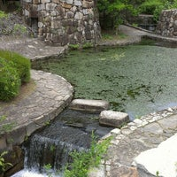 Photo taken at 万博記念公園 春の泉 by Chijsha T. on 6/9/2013