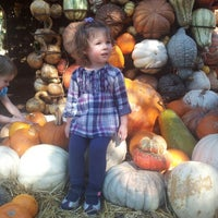 Photo prise au Pumpkin Patch par Audrey B. le11/4/2012