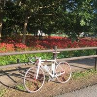 Photo taken at Kinchakuda Manjushage Park by Satoshi W. on 9/29/2017