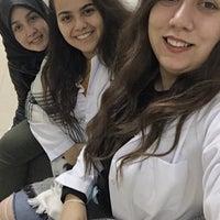 Photo taken at Moleküler Biyoloji ve Genetik Laboratuvarı by Eylem S. on 12/20/2017