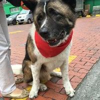 Photo taken at Pet-Mark by Angela V. on 10/7/2016