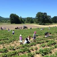 Photo taken at Kruger's Farm Market by Kevin K. on 6/8/2013