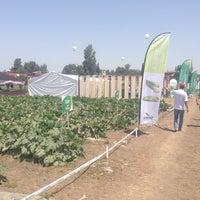 Photo taken at Haciali Köyü by Hasan P. on 6/27/2014