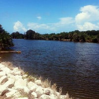 Photo taken at Merritt Island National Wildlife Refuge Manatee Observation Deck by Mary S. on 6/24/2013