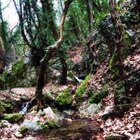 Photo taken at Mount Pelion by Fani D. on 3/30/2014