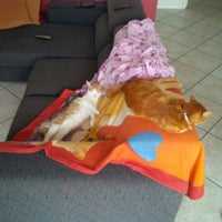 Photo taken at Cologne by Maura C. on 7/29/2014