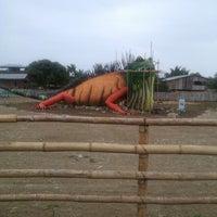 Photo taken at Playa Cojimies by Ing Yujer Gabriel M. on 12/30/2013