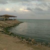 Photo taken at Fish Market سوق السمك by Siedahmed A. on 12/10/2016