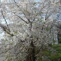 Photo taken at 강릉원주대학교 정문 by Seoyoon P. on 4/8/2014