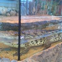 Photo taken at Крокодил Гоша by Марина Г. on 5/13/2015