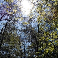 Photo taken at Лісосмуга by Manya D. on 4/25/2014