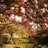 Photo taken at Colebrooke Row Gardens by Morgan C. on 5/3/2013
