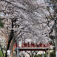 Photo taken at 桜坂 by helohelo on 3/23/2013