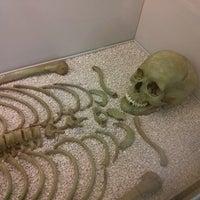 Foto tomada en Museo Arqueológico de Asturias por Roi V. el 9/4/2013