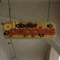 Photo taken at All About puppies by Rayanne T. on 2/5/2013