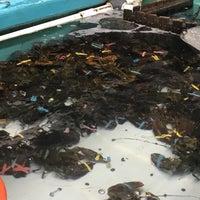 9/10/2018에 Kevin M.님이 Ogunquit Lobster Pound Restaurant에서 찍은 사진