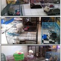 Photo taken at Rumah Sakit Hewan by ®€tÑÔ Y. on 7/31/2014