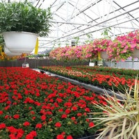 Photo taken at Williams Flower Company by Thad N. on 4/21/2013