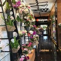 9/4/2017 tarihinde Gulsen G.ziyaretçi tarafından Gülşen Florist'de çekilen fotoğraf