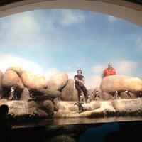 Photo taken at Penguin Tank by Oguz on 12/17/2012