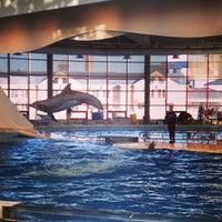 Photo taken at National Aquarium by Sean M. on 1/20/2013