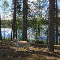 Photo taken at Paltasen Kesäkahvila by Tiia R. on 7/9/2017