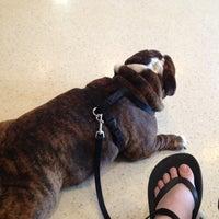 Photo taken at Oak Creek Veterinary Hospital by Heather K. on 4/17/2013