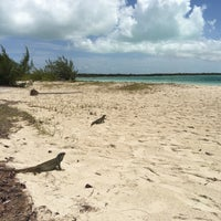 Photo taken at Iguana Island by Eunice H. on 9/7/2016