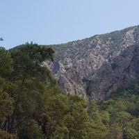 8/22/2017 tarihinde Nur E.ziyaretçi tarafından Natural Agac Evleri'de çekilen fotoğraf