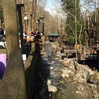 Photo taken at Maşukiye Kültür Parkı by Yavuz on 2/19/2017