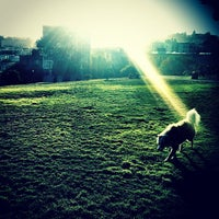 Photo taken at Alamo Square Dog Park by Omarrr R. on 9/18/2012