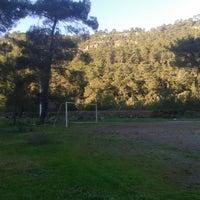 Photo taken at gökçe köyü dere kenarı by Derya A. on 12/23/2014