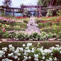 photo taken at berkeley rose garden by taro m on 592013 - Berkeley Rose Garden