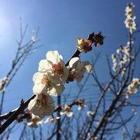 Photo taken at 内山苺園 by Yoichi M. on 3/23/2014