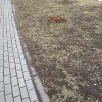 Photo taken at Советский переулок by Valery M. on 4/13/2014