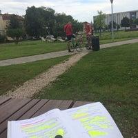 Photo taken at Debreceni Egyetem Kassai Campus by Jinna💕 on 5/26/2014