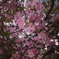 Photo taken at 西天満どんぐり公園 by Coco on 4/19/2014