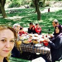 Photo taken at Engilli piknik Alan by Seyhan on 5/8/2016
