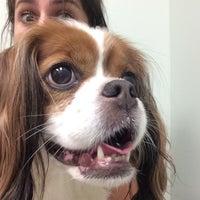 Photo taken at Kenwood Animal Hospital by Natalie R. on 7/24/2014