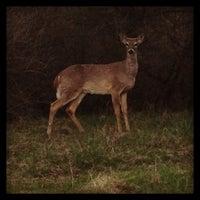 4/28/2013에 Ruth V.님이 Milford- Kensington Trail에서 찍은 사진
