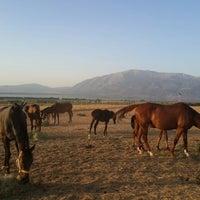 Photo taken at ünlüoğlu Çiftliği by Özkan K. on 8/1/2014