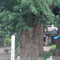 Photo taken at 龍光寺の大イチョウ by NOBUYASU M. on 8/4/2014