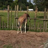 Photo taken at Blair Drummond Safari Park by Loda on 8/8/2015