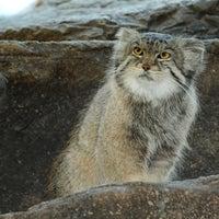 Photo taken at Prospect Park Zoo by Prospect Park Zoo on 4/1/2015