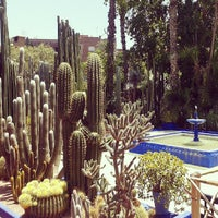 Photo taken at Jardin de Majorelle by Jesus P. on 7/15/2013
