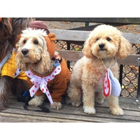Photo taken at Tompkins Square Park Dog Run by Paige C. on 10/24/2015